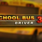 Schoolbus Driver 3d thumb 2640