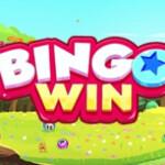 Bingo Win Play Bingo with Friends 2685