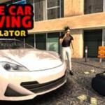 Crime Car Driving Simulator 2008