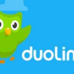 Duolingo Learn Languages Free 6072