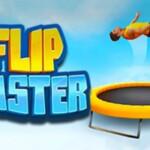 Flip Master1 303