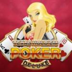 Texas HoldEm Poker Deluxe 6008