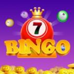 bingo free world trip 2005