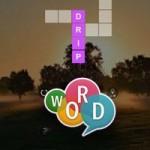 com.fillword.cross .wordmind.en