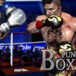 punch boxing 2980